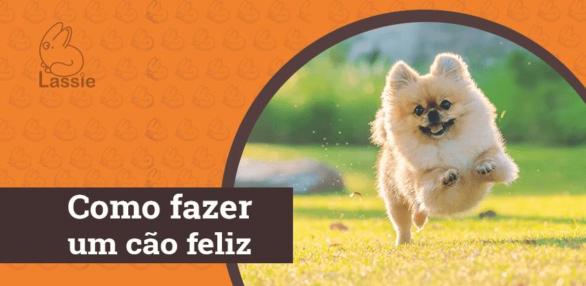 Como fazer um cão feliz